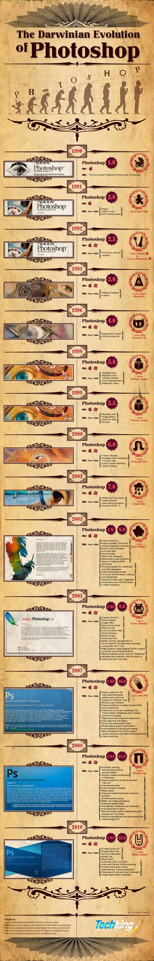 web-design-graphic-design-infographics-012