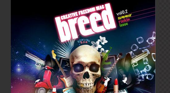 magazines-graphic-design-free-016