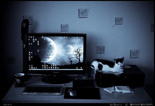 workspace-inspiration-007