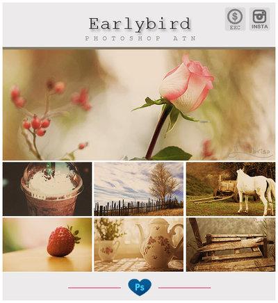 Instagram Earlybird