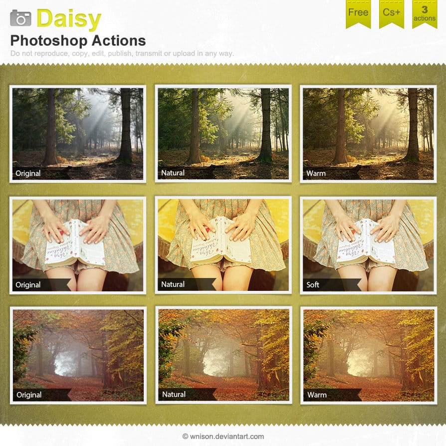 Daisy Photoshop Actions
