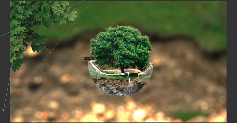 Create a Tree Sphere Photo Manipulation in Photoshop