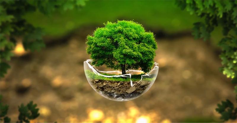 Tree-Sphere-Photoshop-Tutorial