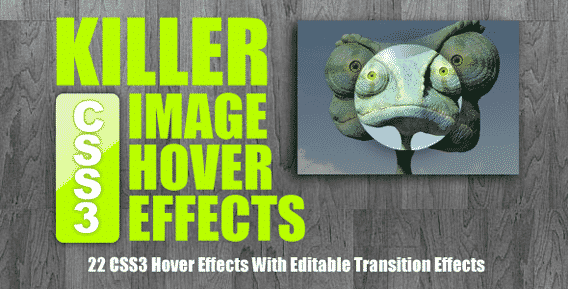 jQuery-Hover-CSS-Hover-Effects-007