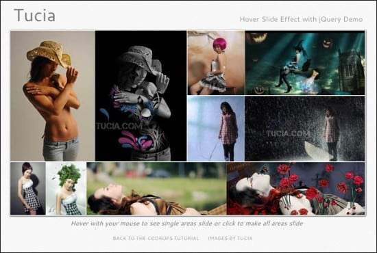 jQuery-Hover-CSS-Hover-Effects-030