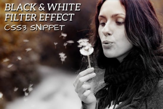 CSS3 Snippet: Convert Color Images to Black and White