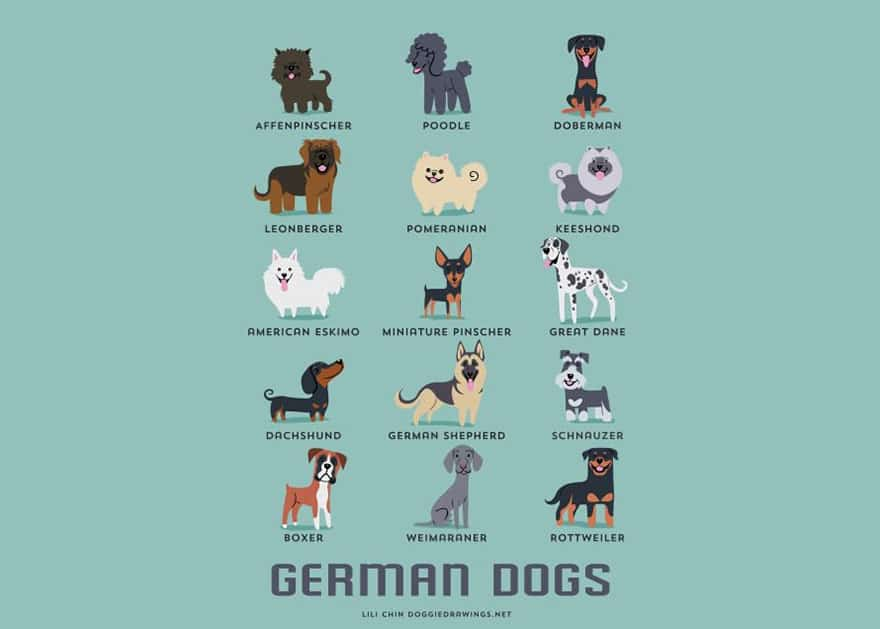 The-Geographic-Origin-Of-Dog-Breeds-010