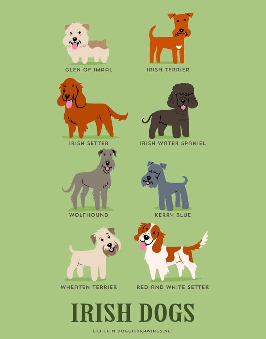 The-Geographic-Origin-Of-Dog-Breeds-011