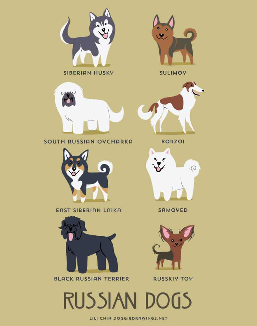 The-Geographic-Origin-Of-Dog-Breeds-013