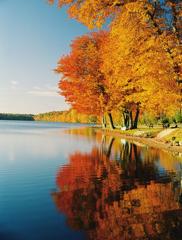 Color by the lake in Autumn