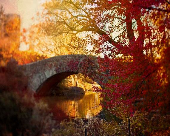 Leaf strewn bridge in Central Park