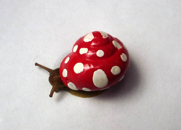 17 Snails with Pimped Out Artwork On Their Shells To Prevent Snails From Getting Stepped On