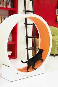 30 Clever Furniture Design Ideas For Pets Designbump