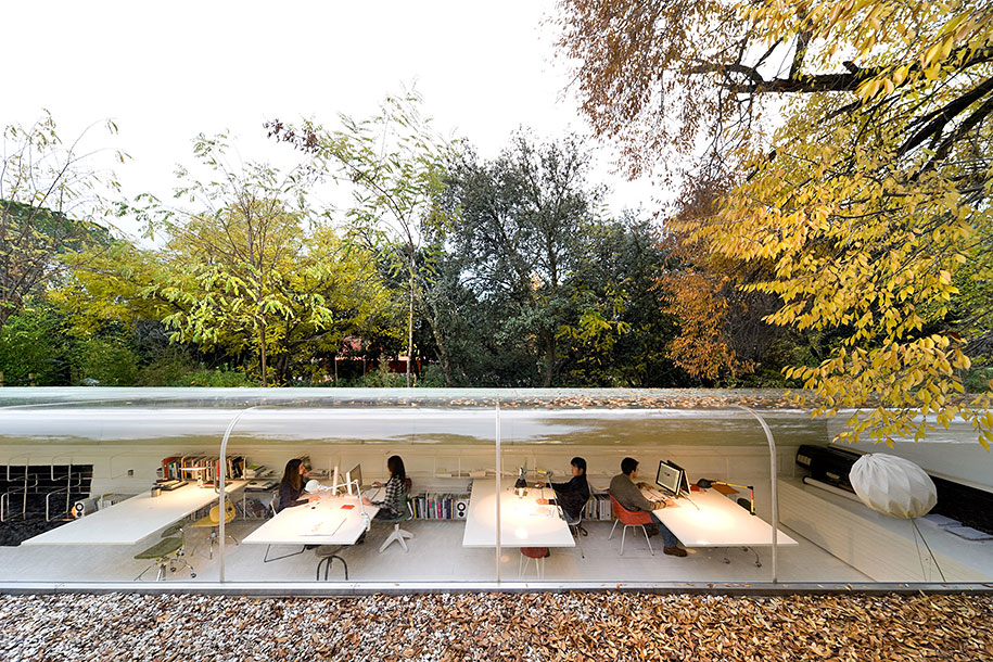 Glass Office Makes Workers Feel Like They're In An Oasis