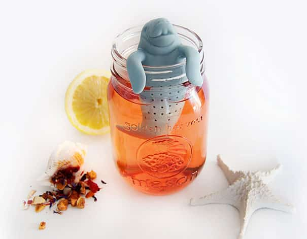 fun-tea-infusers-018