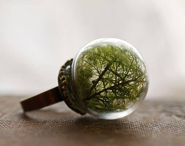 glass-globe-terrarium-ring-designs-11