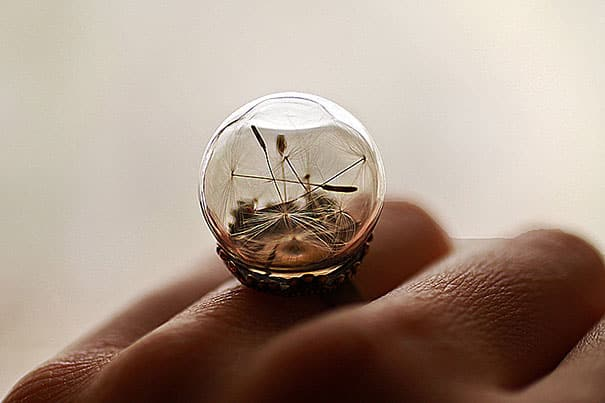 glass-globe-terrarium-ring-designs-9