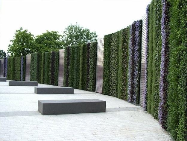Living Wall at the Birmingham NEC