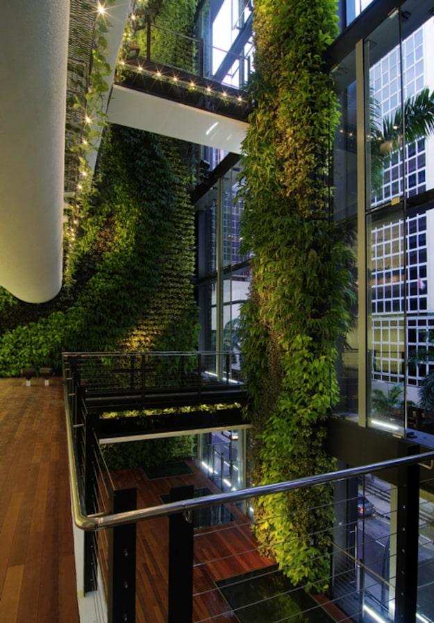 Singaporean Office Garden