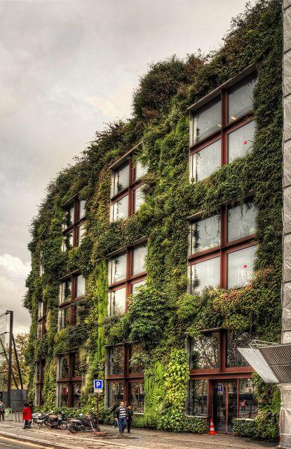 vertical-garden-002