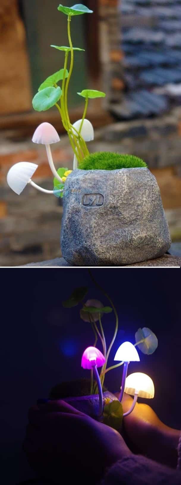 Mushroom Plant Night Light