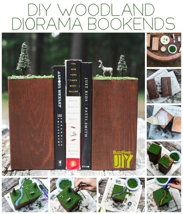 Woodland Dioramas