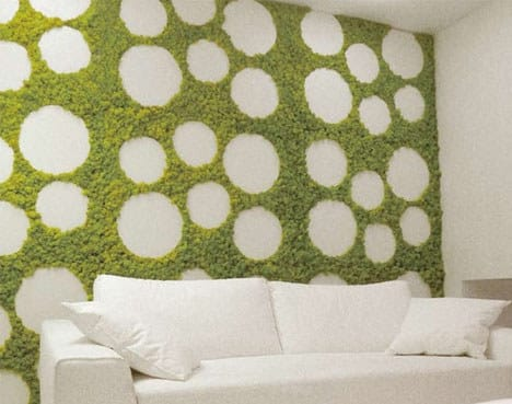 Make an entire living wall.