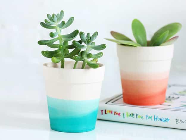 Dip Dye Planters