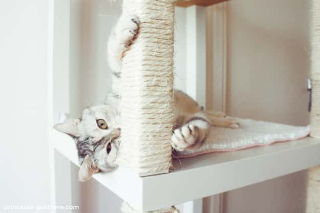 Stack several Lack tables together into a tower for your cat.