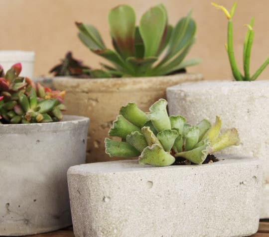 Modern Cement Planters