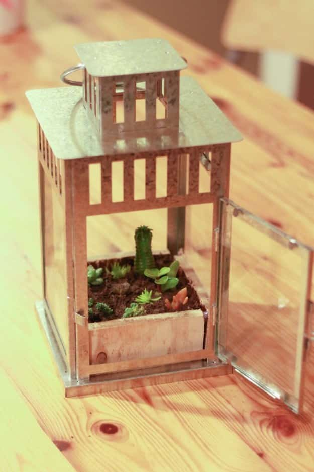 "Ditch the tea lights and convert your Borrby lantern into a ""plantern"" for a few lucky succulents."