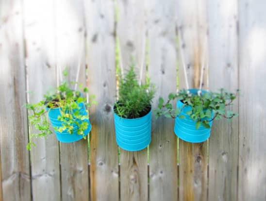 Hanging Tin Garden
