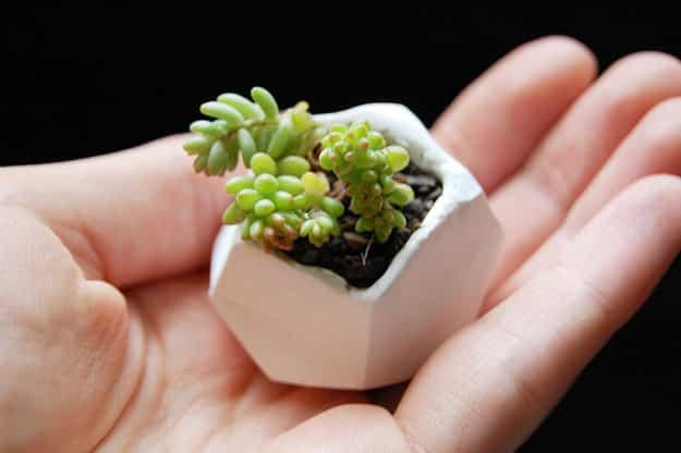 Tiny Polymer Clay Pots