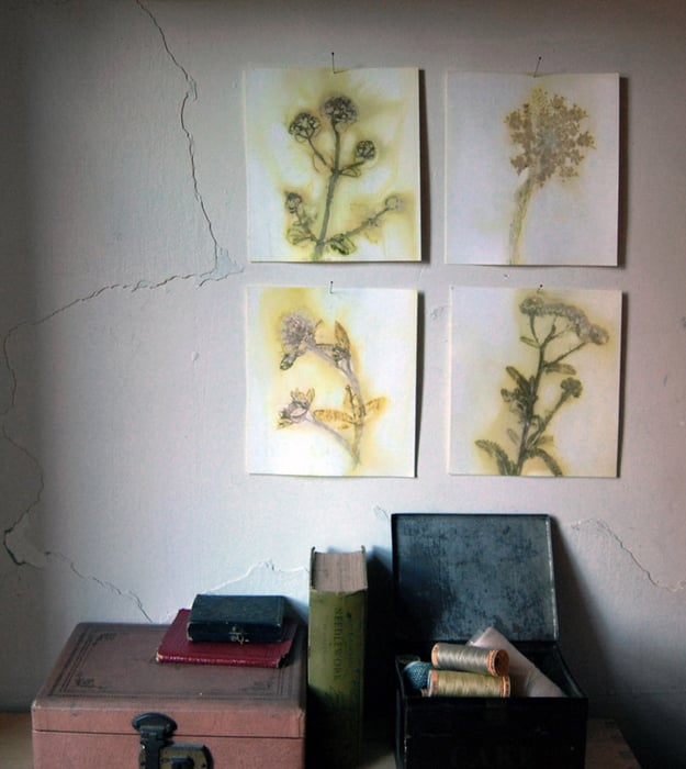 Design Sponge: Wildflower Wall Art