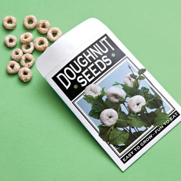 """Plant """"doughnut seeds."""""""