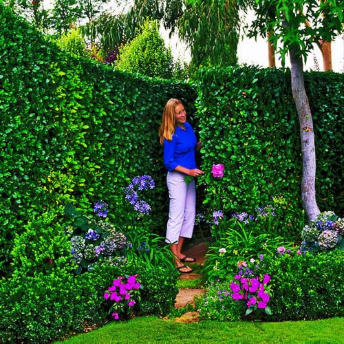If you've got the landscaping skills, build a secret passageway.