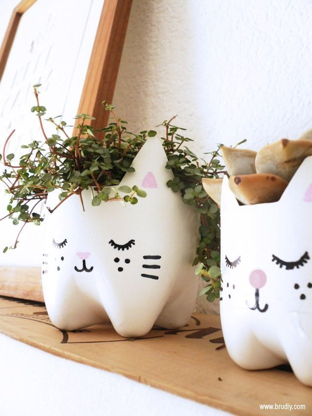 This cat plant pot is made from, no joke, the bottom half of a 2-liter soda bottle.