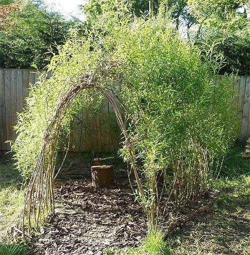 Or a willow den.