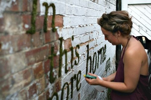 Write an inspirational quote on a brick wall with moss graffiti.