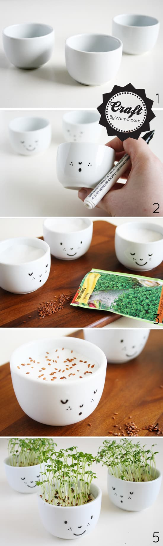 These cress cups make for the best beginner garden ever.