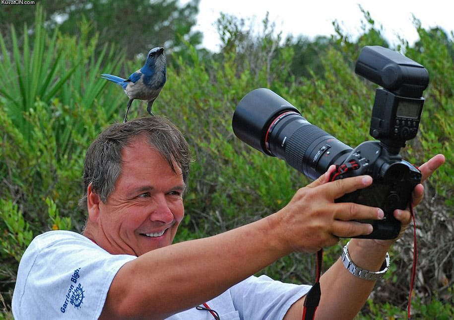 crazy-dedicated-photographers-extreme-photography-11