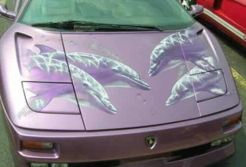 dolphin car