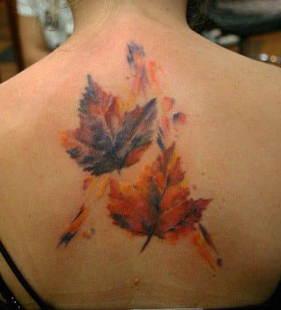 Look at those autumnal hues.