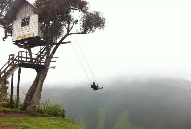 Swinging in the wind