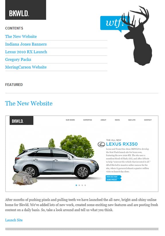 Clean and Simple Newsletter Design