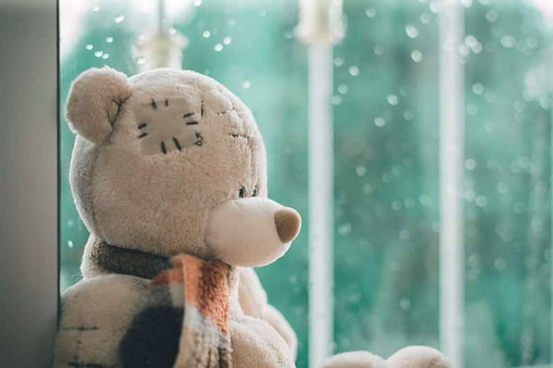 Teddy Bear Images : Thoughtful Bear