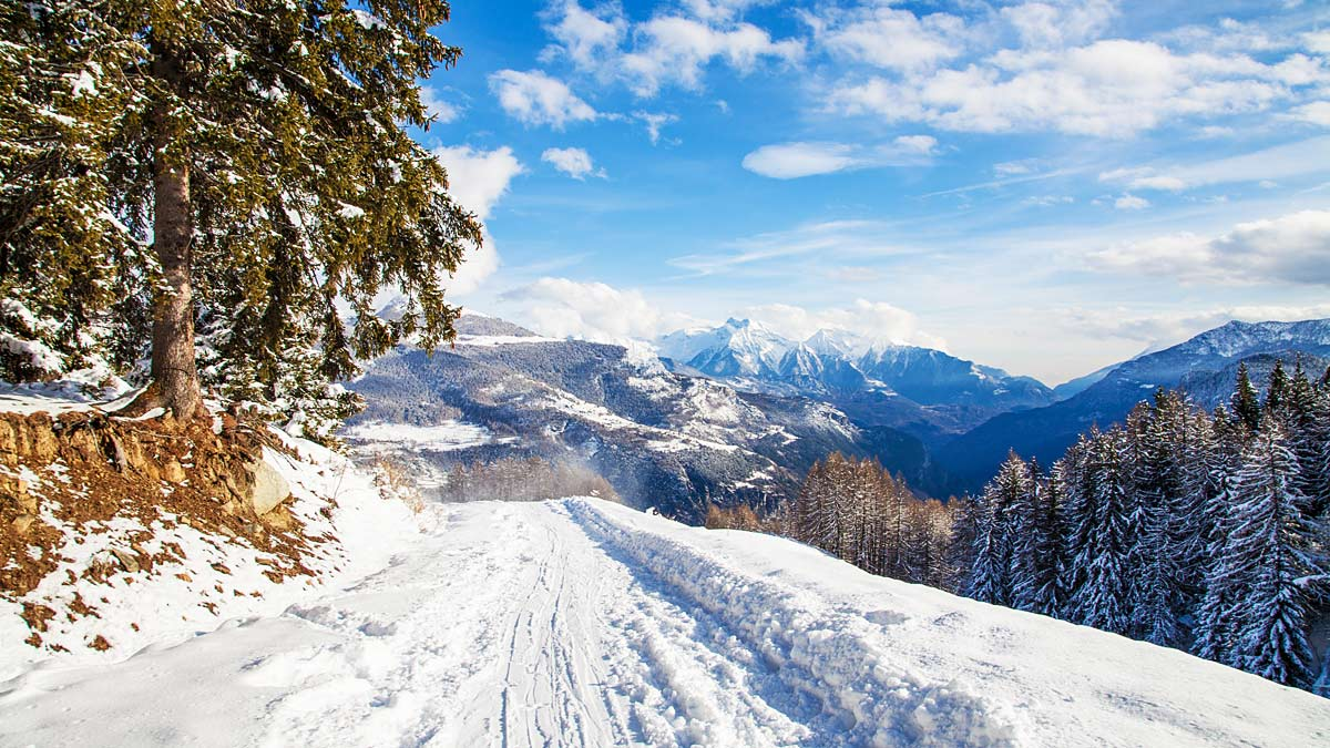 Amazing Pictures of Winter