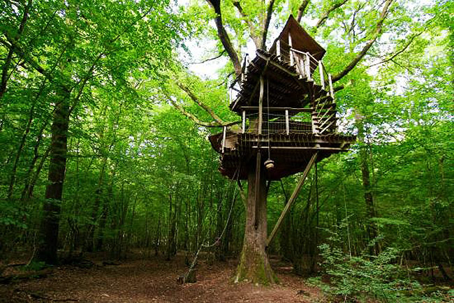 Tree houses are idyllically located on the edge of a tranquil pond in the department of Eure-et-Loir