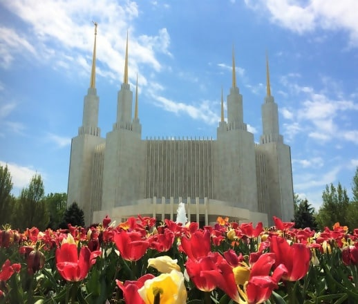 https://www.humaverse.com/wp-content/uploads/2018/12/mormon-1420678_960_720-1542132402043.jpg